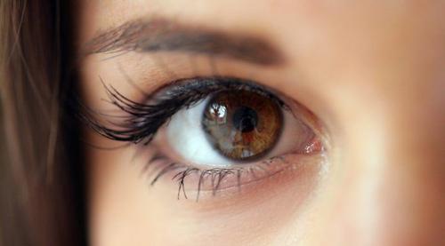 alaska mắt nâu